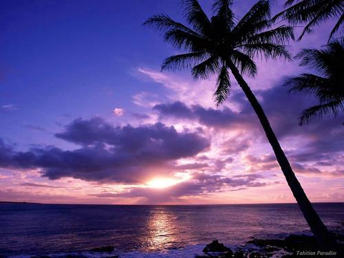 我喜欢白天的太阳晚上的月亮和永远的你.